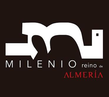 milenio-almeria-blog-guadalinfo